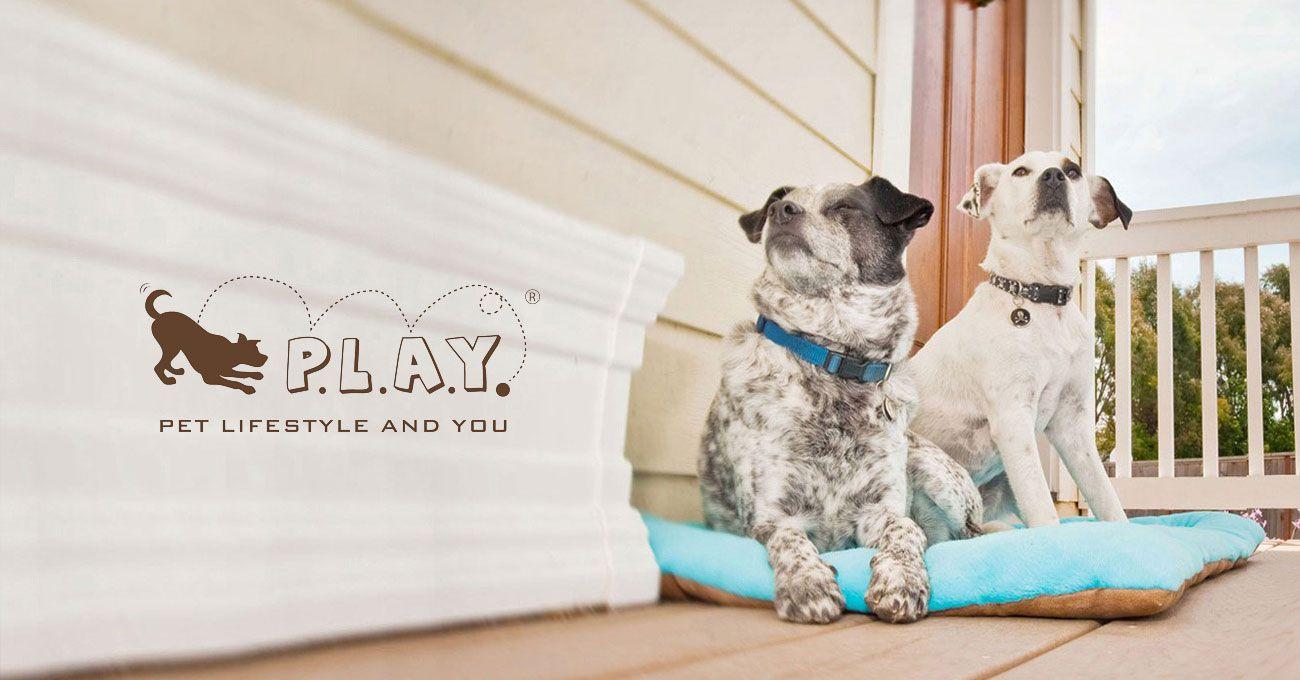 美國 P.L.A.Y.® 寵物生活
