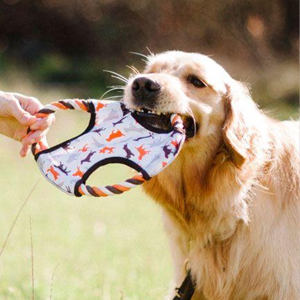 美國 P.L.A.Y.® 寵物生活 OUTDOOR 露營系列 拋接飛盤