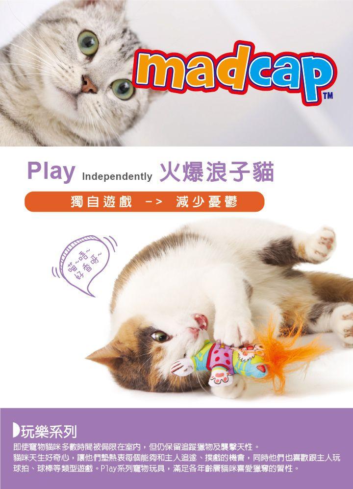 Play-火爆貓_主視覺_05