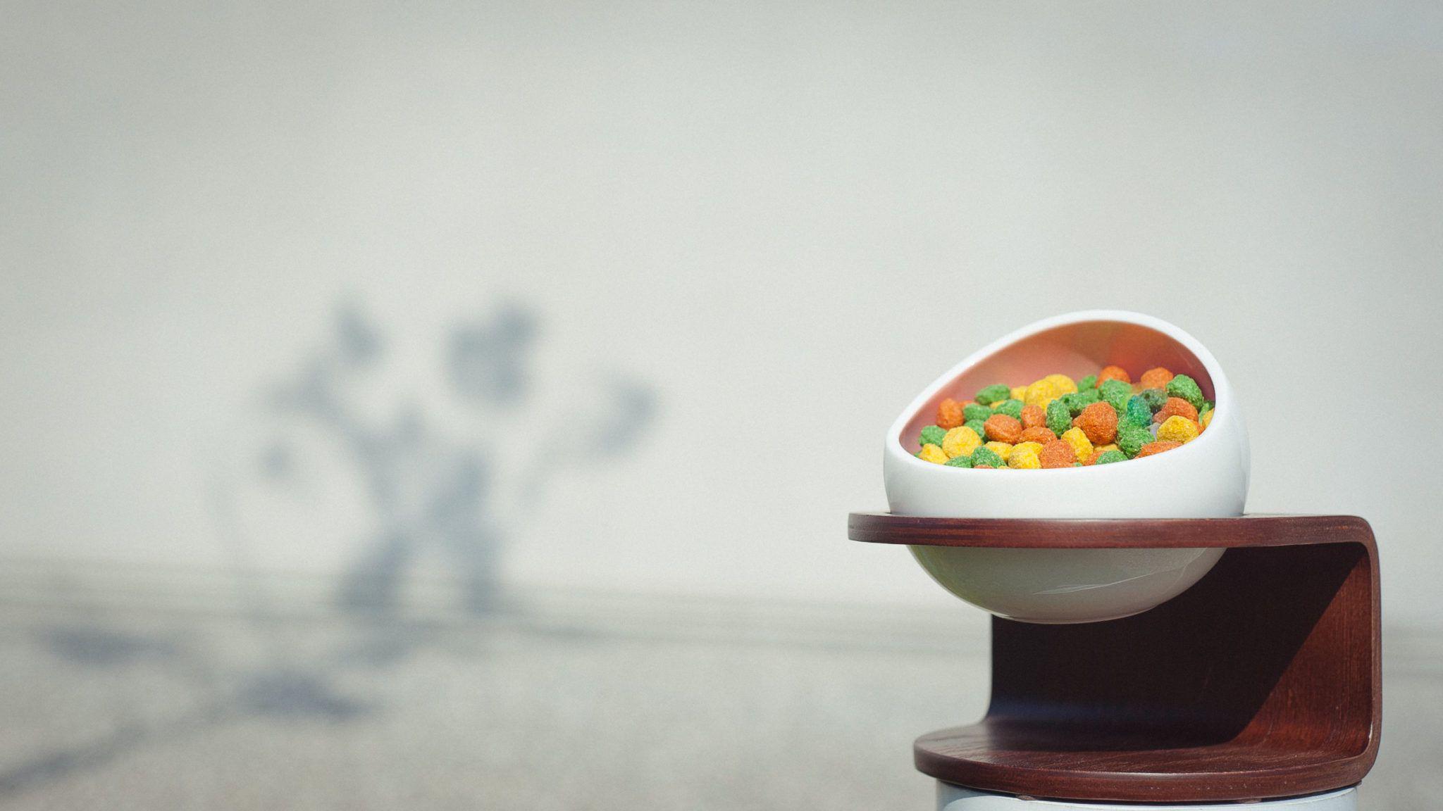MYZOO 時空膠囊碗 / 寵物碗