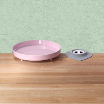 sandwich plate-cherry blossing