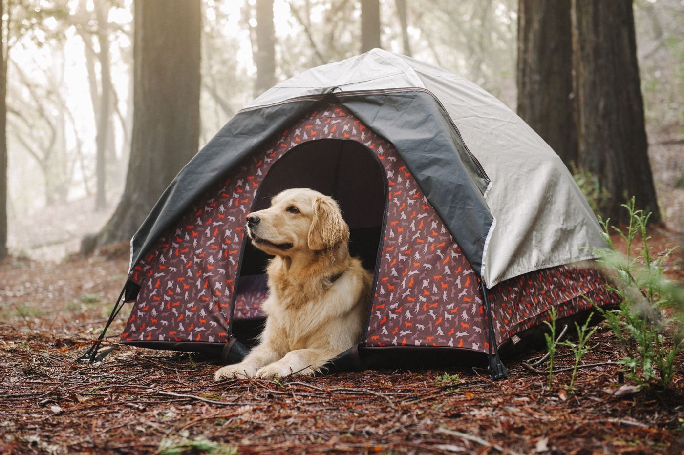 美國 P.L.A.Y. 露營系列 寵物專用帳篷 摩卡棕