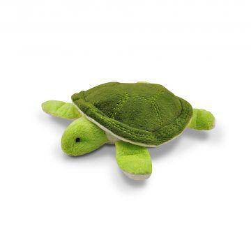 @海底世界-綠龜-(2)