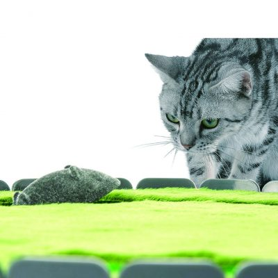 P貓鼠捉迷藏-躲貓貓玩具-01