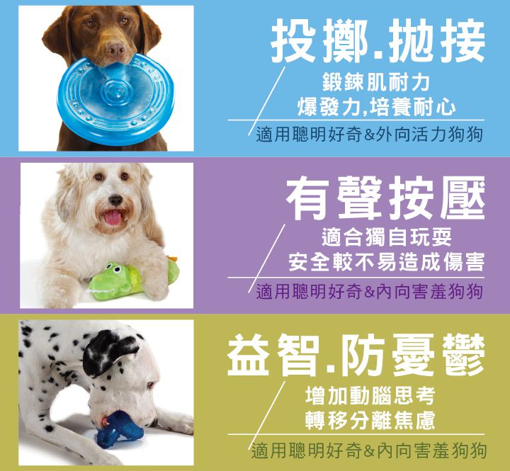 美國 Petstages 狗玩具 布利牛筋棒 S