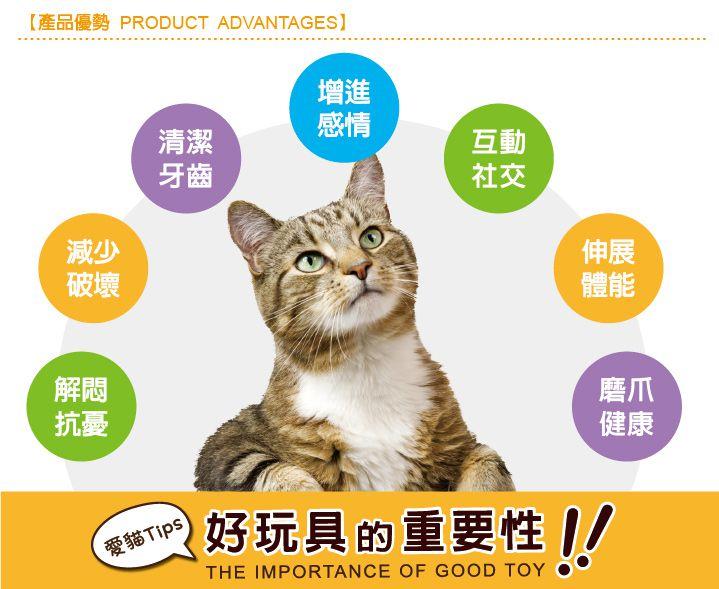 美國 Petstages 貓玩具 羽毛健齒包
