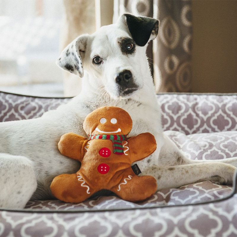 美國 P.L.A.Y. 玩具系列 經典聖誕大餐 薑餅人