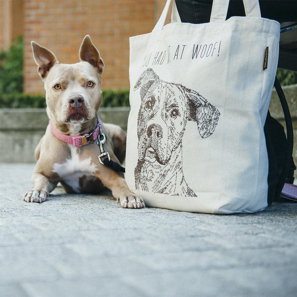 美國 P.L.A.Y. 環保購物袋 米克斯