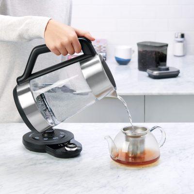 8716900 可調溫電茶壺 (13)