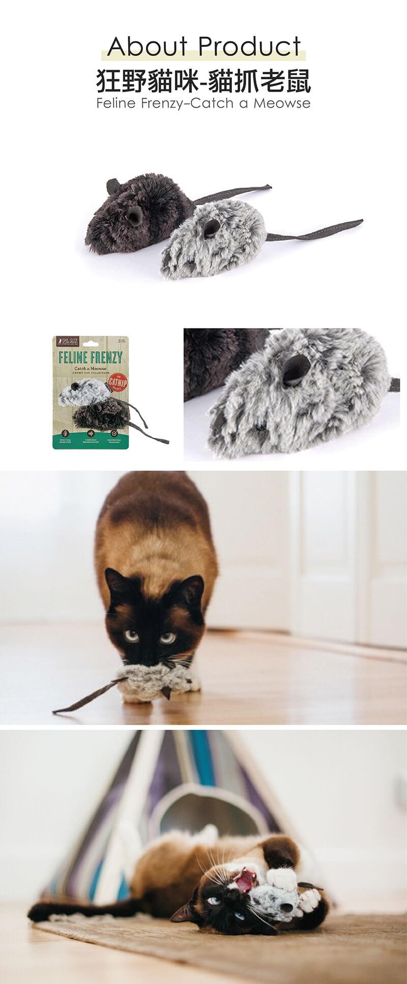 美國 P.L.A.Y. 玩具系列 狂野貓咪 貓抓老鼠