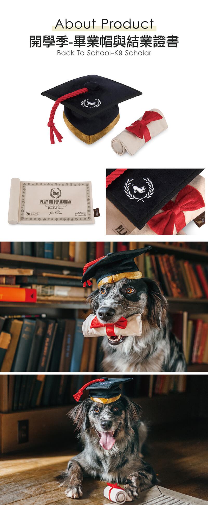 美國 P.L.A.Y. 玩具系列 開學季 畢業帽與結業證書