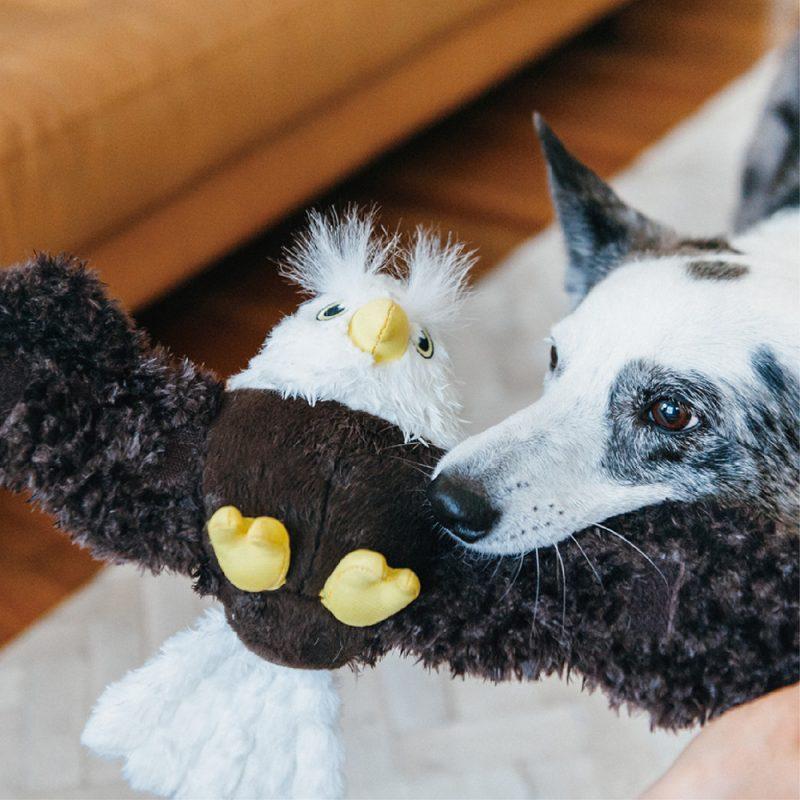 美國 P.L.A.Y. 玩具系列 魅力珍禽 埃德加老鷹